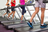 Row of people on treadmills — Stock Photo