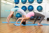 Women in crab pose in fitness studio — 图库照片