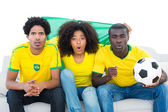 Excited football fans in yellow with brazil flag — Stock Photo