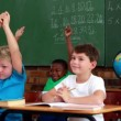 Pupils listening and raising their hands during class — Stock Video #50448385
