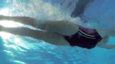 Athletic swimmer swimming in pool — Stock Video