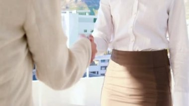 Pretty businesswoman smiling and shaking hands — Stock Video