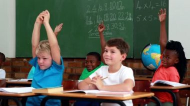Pupils listening and raising their hands during class — Video Stock