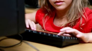 Little girl during computer class — Stock Video