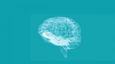 Revolving transparent human brain graphic — Stock Video