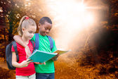 Pupils reading against forest trail — Stock Photo