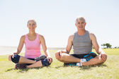 Fit mature couple sitting in lotus pose on the grass — Stock Photo