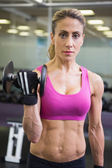 Portrait of fit woman exercising with dumbbell in gym — Photo