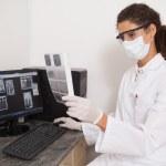 Dentist examining xrays on computer — Stock Photo