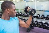 Young man exercising with dumbbell — Stock Photo