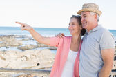 Happy casual couple looking at something by the coast — Foto Stock