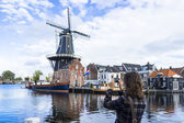 Tourist girl is taking pictures of traditional Dutch windmill — Stock Photo