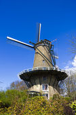 Windmill in Alkmaar — Foto de Stock