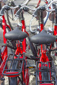 Parking of the new red bicycles in Amsterdam, Europe — Stock Photo