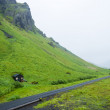 Iceland summer — Stock Photo #29137791