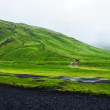Road near Skogafoss waterfall in Iceland, rainy summer — Stock Photo #29843313