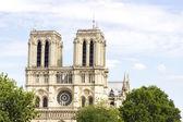 Notre Dame de Paris cathedral — Stock fotografie