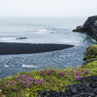 Stock Photo: Black volcanic sand on south coast of Iceland