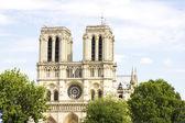 Notre dame catedral de paris — Foto Stock