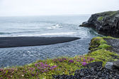 Black volcanic sand on the south coast of Iceland — 图库照片