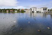 Pond in central Reykjavik — Stock Photo