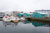 Port of Reykjavik — Stock Photo