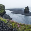Black volcanic sand on the south coast of Iceland — Stock Photo