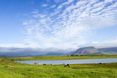 Beautiful lake against mountain background, Iceland, good summer — Stok fotoğraf
