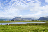 Beautiful lake against mountain background, Iceland, good summer — Stock Photo