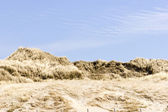 Beach on North Sea, the Netherlands — Stock Photo