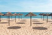 Blauer himmel, blaues meer und sonnenschirme am strand in portugal — Stockfoto
