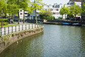 Typical Dutch canal landscape with water, trees,  grass and boat — ストック写真