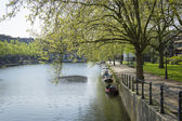 Typical Dutch canal landscape with water, trees,  grass and boat — Stok fotoğraf