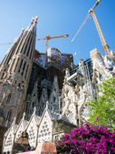 Sagrada familia, barcelona — Stock fotografie