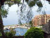 Monaco harbor — Stock Photo