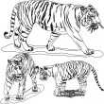 Big Tigger — Stock Vector #18393933