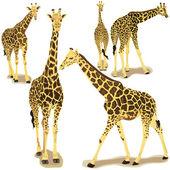 Giraffe collection — Stock Vector