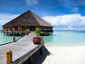 Tropical island. Maldives — Stock Photo