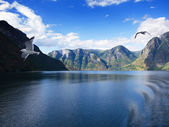 Sogne fjord, Norway — Stock Photo