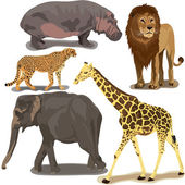 Set With African Animals — Stock Vector