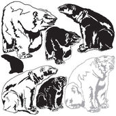 Polar bears — Cтоковый вектор