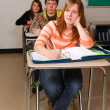 Stock Photo: Students in Classroom