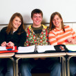 Royalty-Free Stock Photo: Happy Classmates