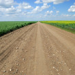Saskatchewan Country Road — Stock Photo