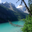 Stock Photo: Mountain Lake Louise