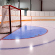Hockey or Ringette Net and Crease - Stok fotoğraf