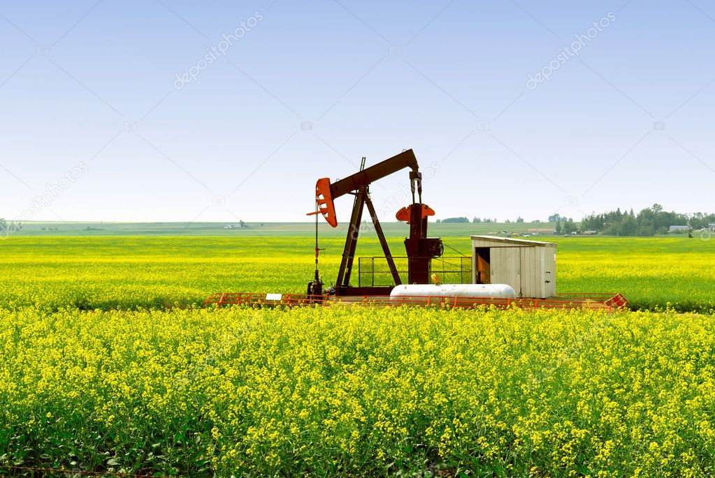 A natural gas pump jack in an Alberta Canola rapeseed field. — Stock Photo #12370019