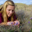 Stock Photo: Prairie Spring Crocus and SaskatchewGirl
