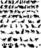 Vector silhouettes of cats — Stock Vector