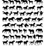 Vector horse silhouettes — Stock Vector #31368699